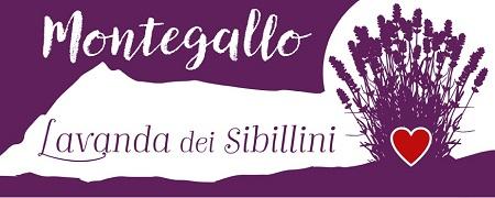 Sacchetti, Bomboniere, Olio Essenziale, Saponi, Confezioni Regalo Lavanda dei Sibillini