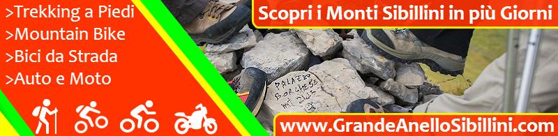 Banner Grande Anello Newsletter