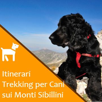 Sentieri e Percorsi per Cani sui Monti Sibillini